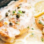 Closeup of creamy lemon chicken scallopini with lemon slices and capers on top