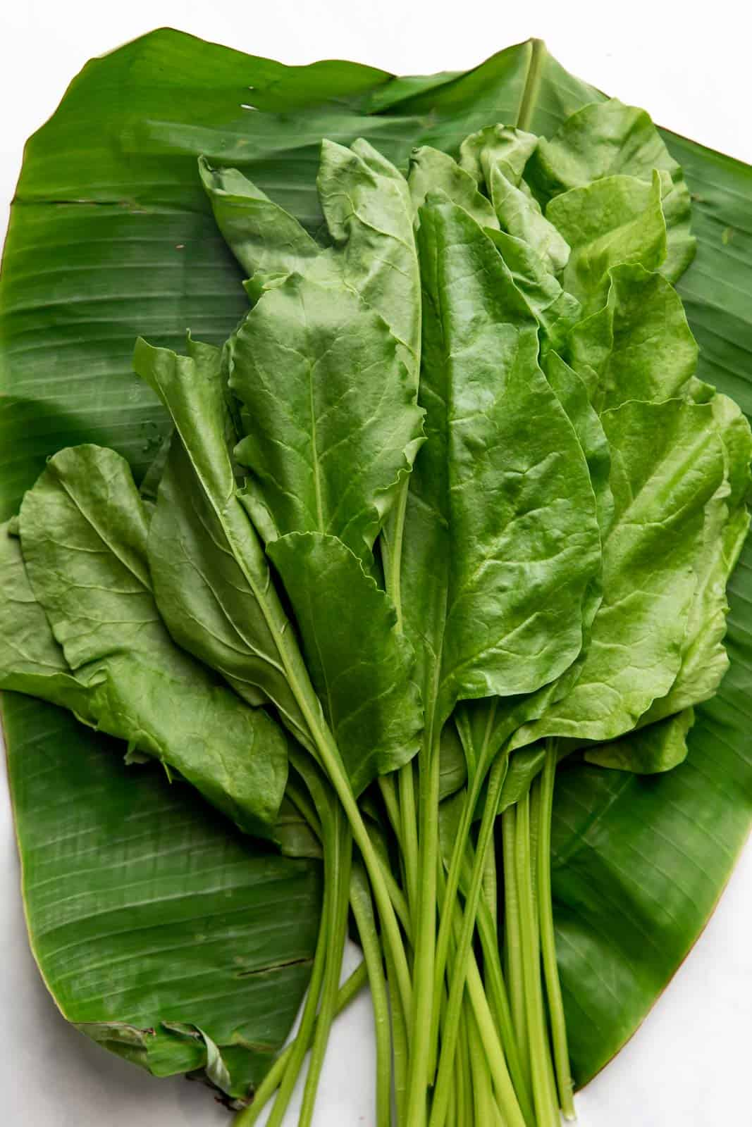 Raw spinach on a banana leaf