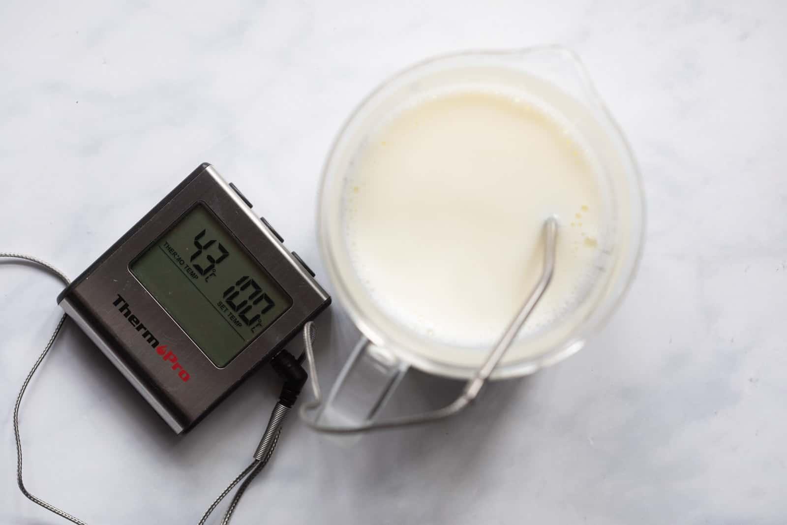 Temperature of the milk optimum for setting yogurt