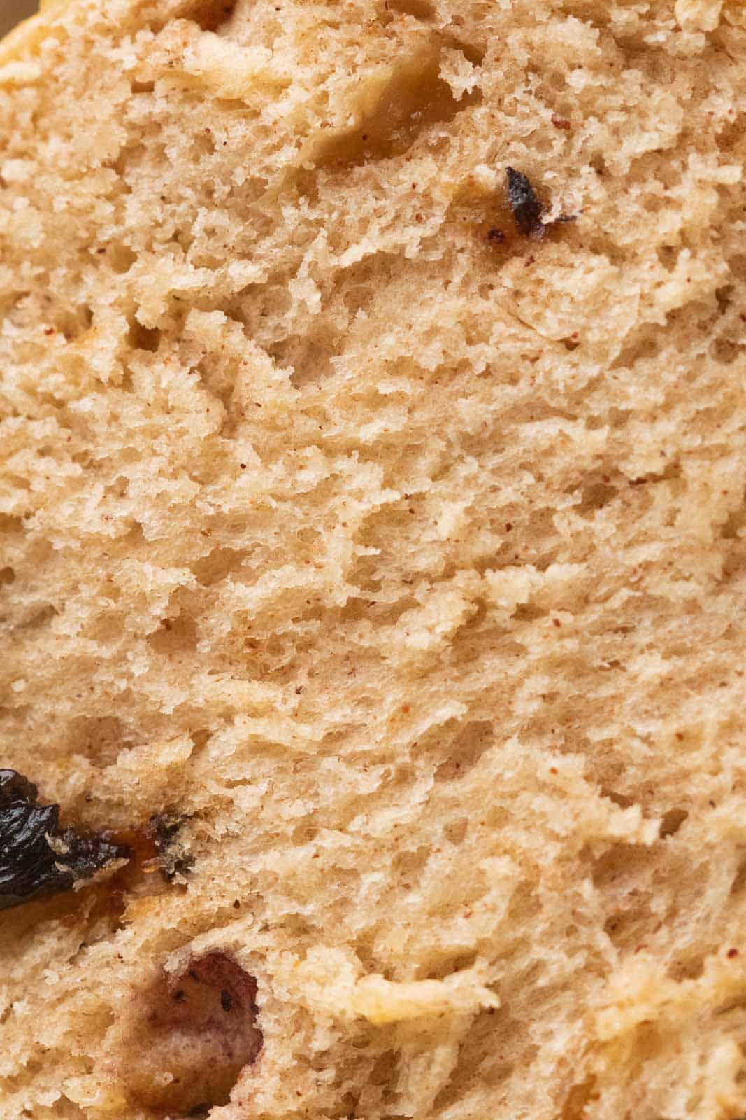 Closeup of the crumb of hot cross buns